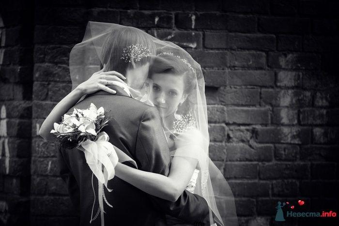 Фото 88857 в коллекции Свадебная фотография - Фотограф Анастасия Яценко
