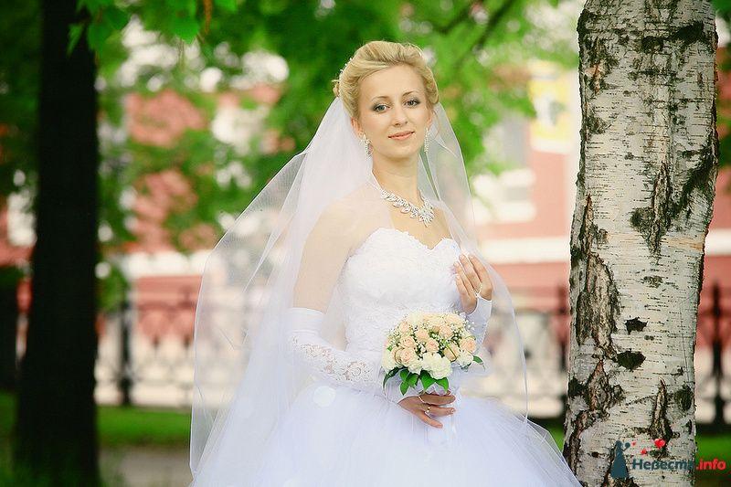 Фото 107716 в коллекции Свадебная фотография - Фотограф Анастасия Яценко