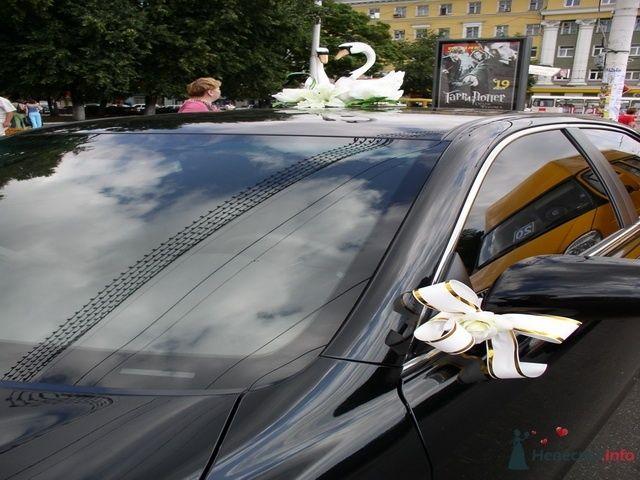 Лебеди на Тоете Камри - фото 67122 Украшения на свадебные авто