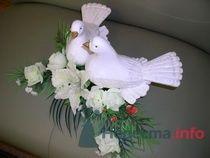 Голуби 4000руб. т.8-951-86-88-187 - фото 70384 Украшения на свадебные авто