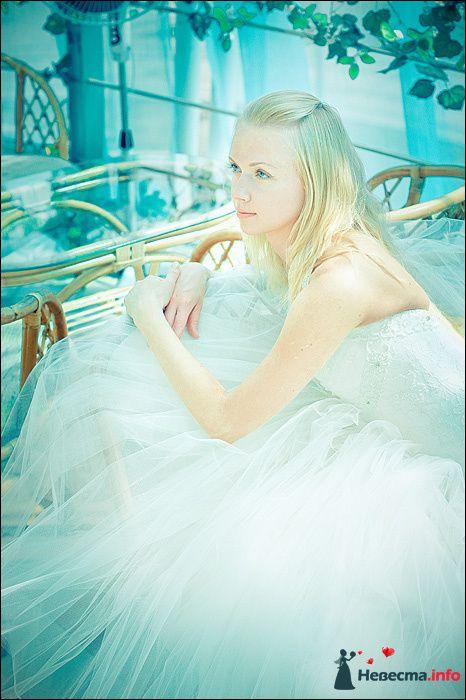Фото 107726 в коллекции Первая выставка Свадебной фотографии в Перми - Фотограф Швецов Николай