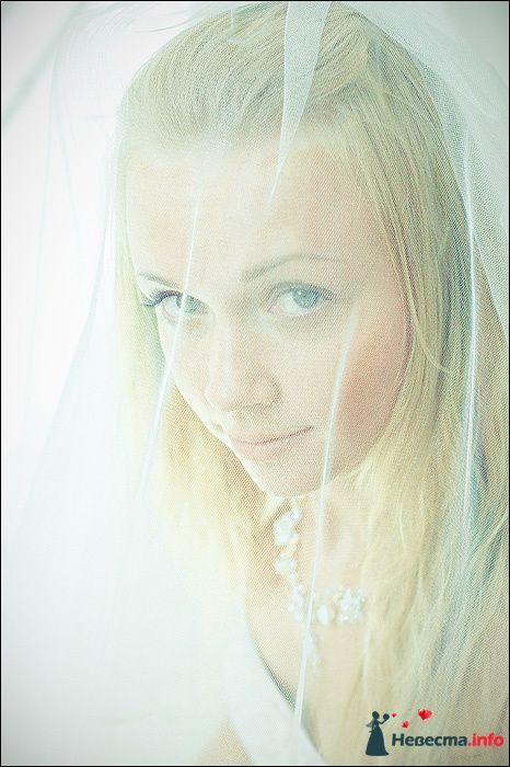 Фото 107757 в коллекции Первая выставка Свадебной фотографии в Перми - Фотограф Швецов Николай