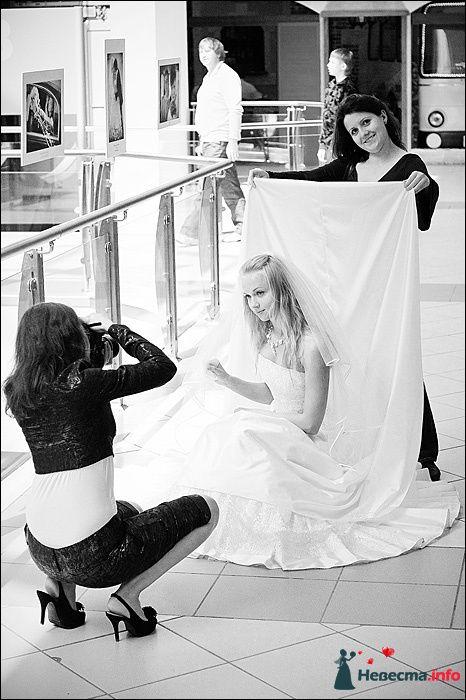 Фото 107758 в коллекции Первая выставка Свадебной фотографии в Перми - Фотограф Швецов Николай