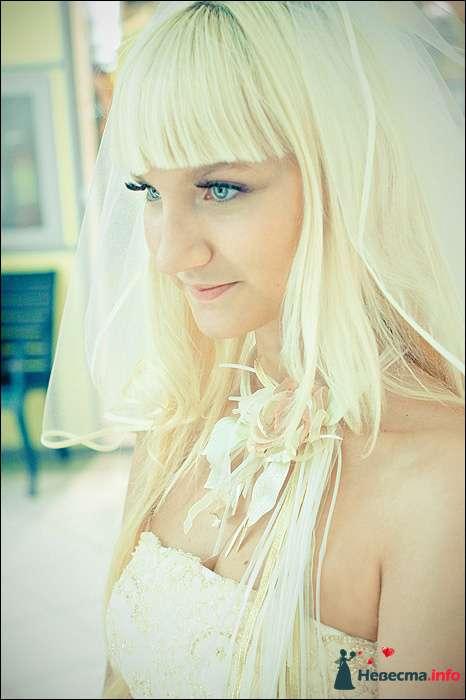 Фото 107769 в коллекции Первая выставка Свадебной фотографии в Перми - Фотограф Швецов Николай
