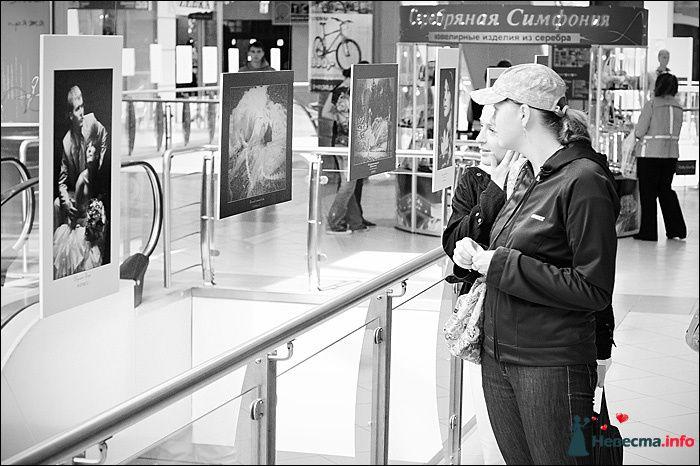 Фото 107773 в коллекции Первая выставка Свадебной фотографии в Перми - Фотограф Швецов Николай