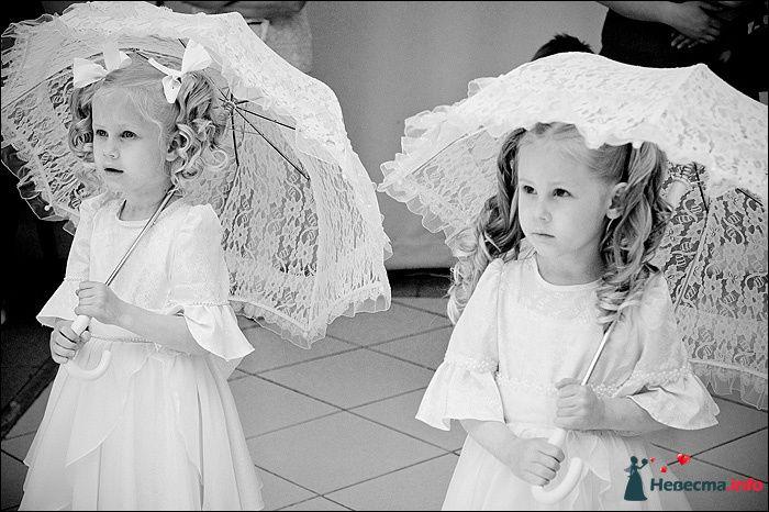 Фото 107781 в коллекции Первая выставка Свадебной фотографии в Перми - Фотограф Швецов Николай