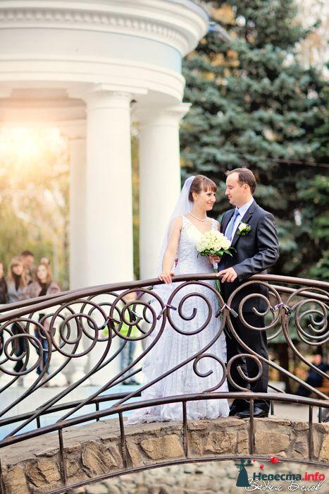 Фото 103627 в коллекции Свадьбы (Фотограф Вадим Белов) - Невеста01