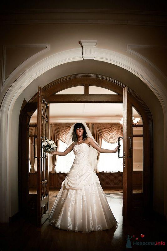 Фото 78825 в коллекции Свадебные фотографии - Art-Lex Studio -  фото и видеосъемка