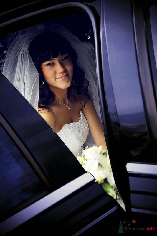 Фото 78826 в коллекции Свадебные фотографии - Art-Lex Studio -  фото и видеосъемка