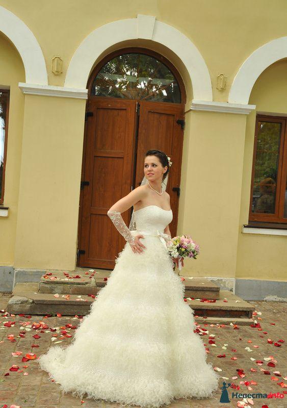 Фото 113740 в коллекции Платье папилио