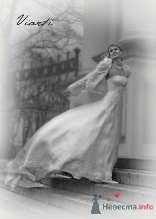 Фото 19067 в коллекции Мои фотографии - mechta