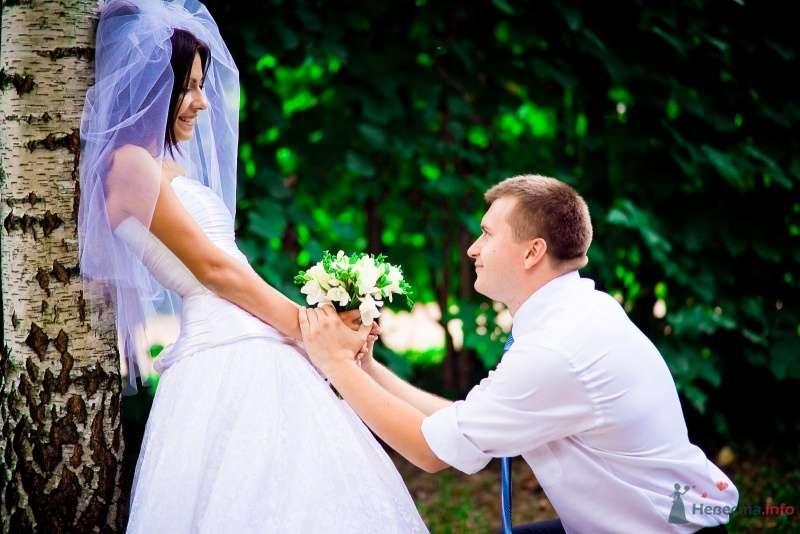 Жених стоит на коленях перед невестой в лесу - фото 54364 Anjuta