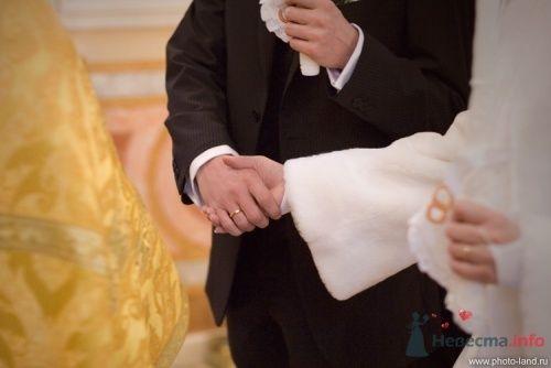 Фото 19637 в коллекции Венчание Маши и Тедди - Свадебные фотоистории от Андрея Егорова