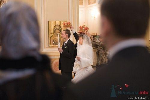 Фото 19644 в коллекции Венчание Маши и Тедди - Свадебные фотоистории от Андрея Егорова