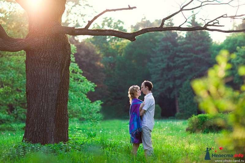 Фото 108186 в коллекции Предсвадебное Лавстори Аллы и Паши - Свадебные фотоистории от Андрея Егорова