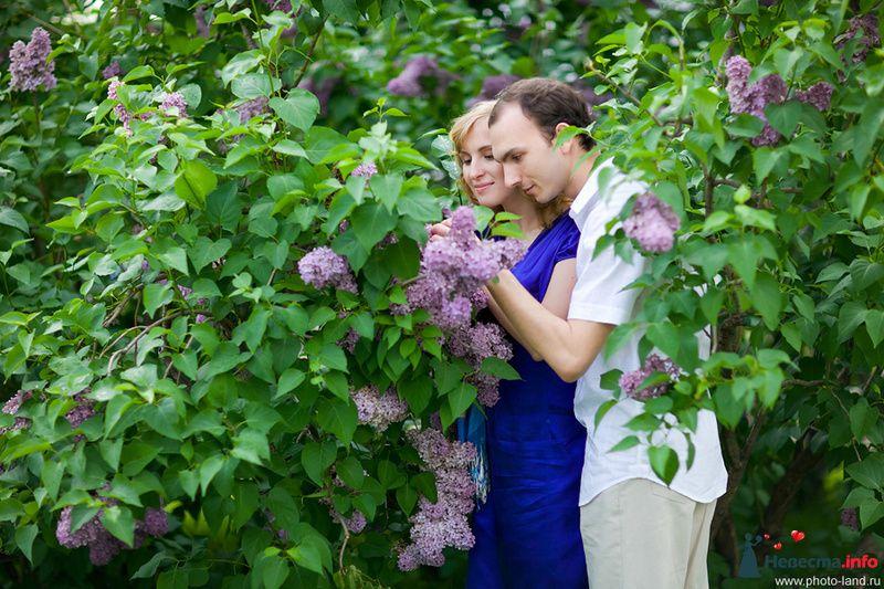 Предсвадебная Лавстори Аллы и Паши - фото 108277 Свадебные фотоистории от Андрея Егорова