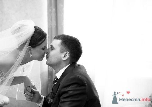 Фото 69145 в коллекции Наша самая счастливая свадьба - Счастливая Ксю