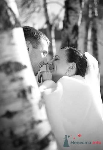 Фото 69180 в коллекции Наша самая счастливая свадьба - Счастливая Ксю