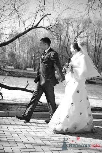 Фото 69192 в коллекции Наша самая счастливая свадьба - Счастливая Ксю