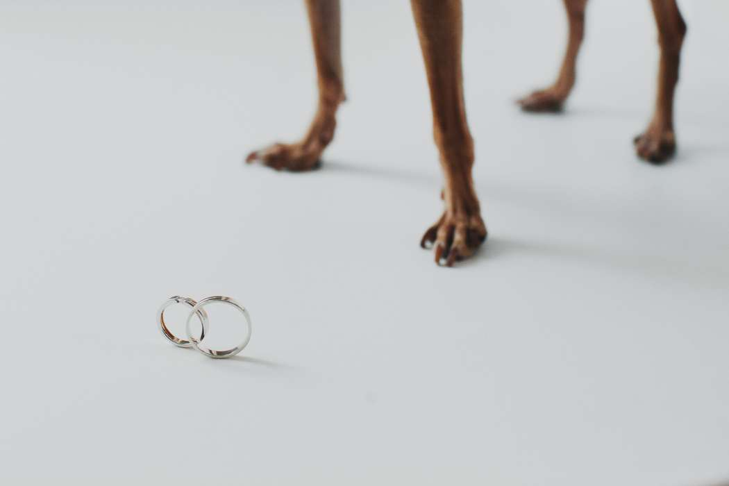 Обручальные кольца. Свадебное фото. - фото 2160630 Свадбеный фотограф Татьяна Кугушева