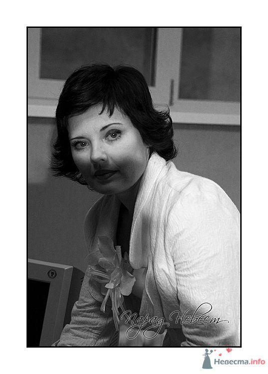 Фото 72489 в коллекции Парад Невест II - Фотостудия Александра Деменева