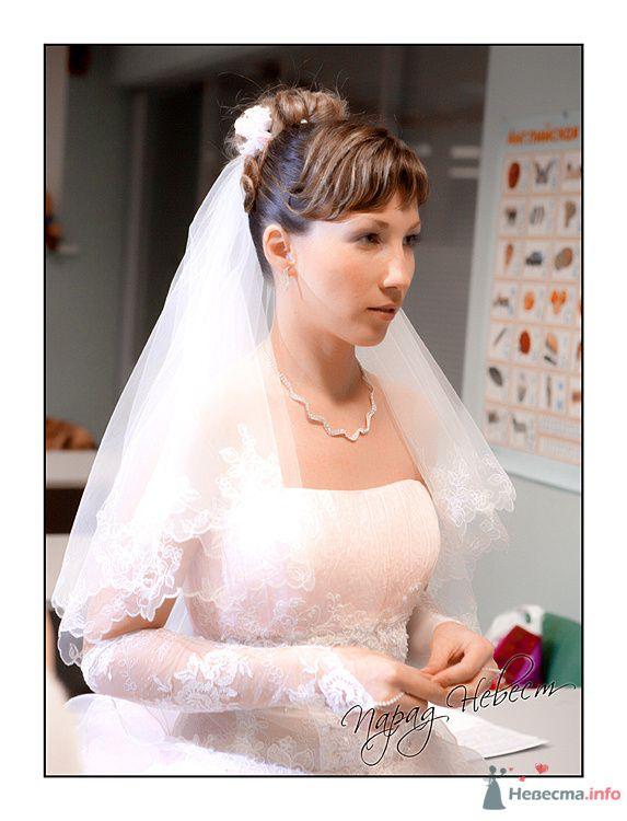 Фото 72491 в коллекции Парад Невест II