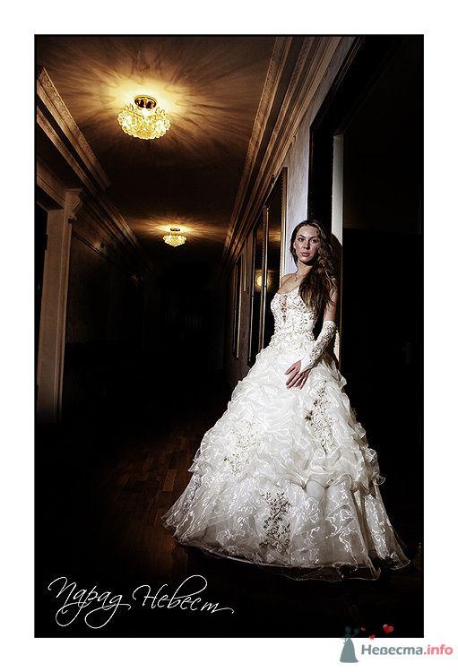 Фото 75097 в коллекции Парад Невест II - Фотостудия Александра Деменева