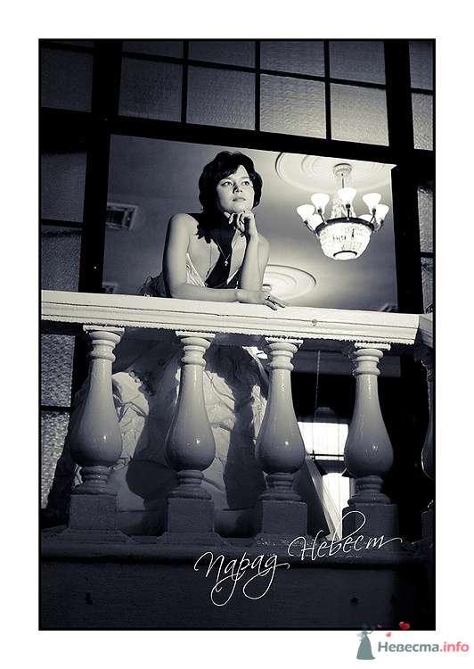 Фото 79178 в коллекции Парад Невест II - Фотостудия Александра Деменева