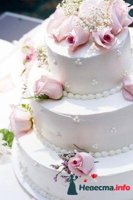 Фото 124064 в коллекции Мои фотографии - Невеста01