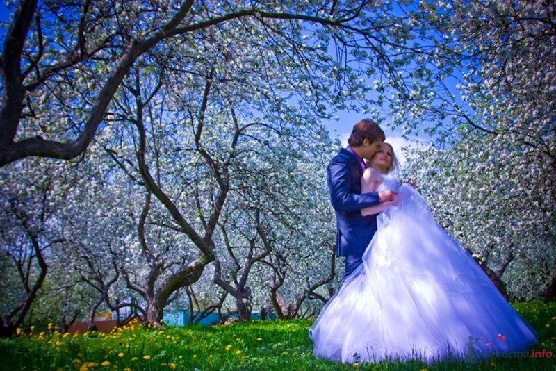 Фото 69841 в коллекции Свадебные фотографии - Свадебный фотограф Сергей Несин