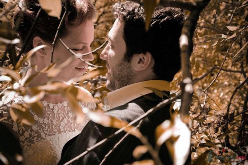 Фото 69844 в коллекции Свадебные фотографии - Свадебный фотограф Сергей Несин