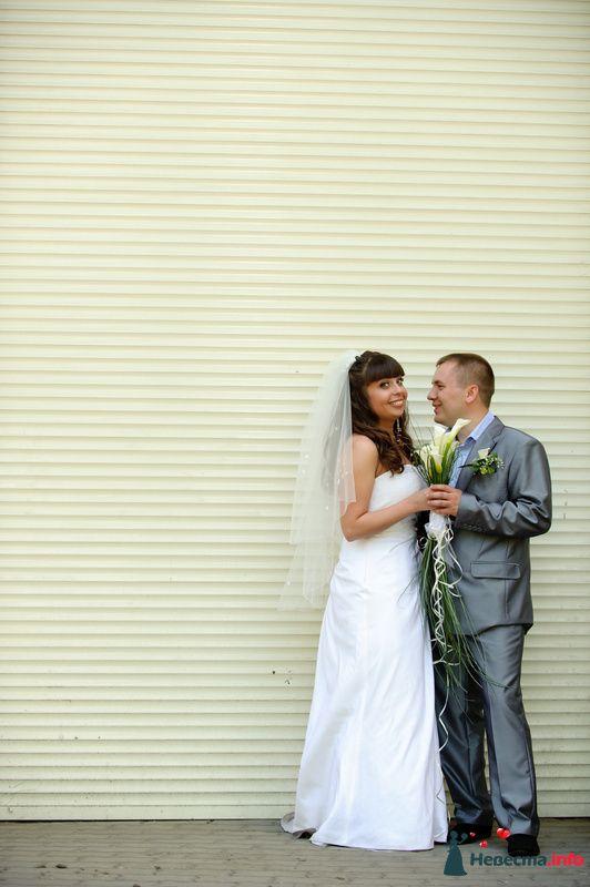 Фото 118883 в коллекции Наша свадьба' 29.05.2010