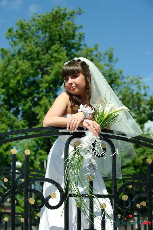 Фото 127392 в коллекции Наша свадьба' 29.05.2010 - Wikiky