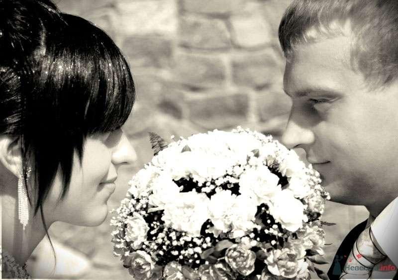 Фото 70444 в коллекции Свадебный фотограф г.Липецк - Невеста01
