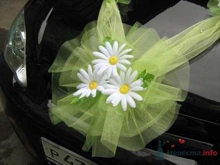 """Фото 72272 в коллекции оформление свадебных автомобилей - """"Дом праздника"""" - свадебное оформление"""