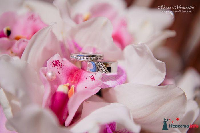 Золотые кольца с россыпью драгоценных камней, на фоне розовых орхидей. - фото 137277 Шоколадка