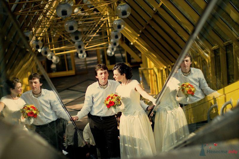 Лера и Дима - фото 70784 Свадебный фотограф. Татьяна Гаранина