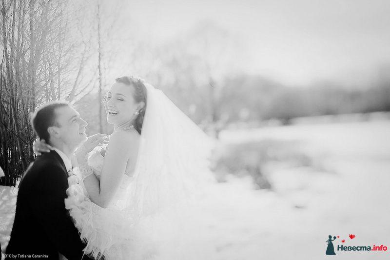 Фото 86707 в коллекции Невесты и женихи!  - Свадебный фотограф. Татьяна Гаранина