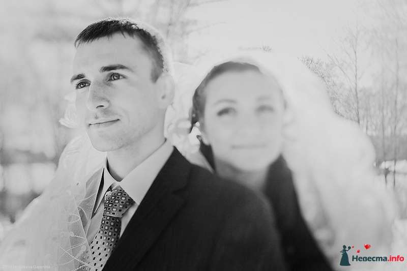 Фото 86712 в коллекции Невесты и женихи!  - Свадебный фотограф. Татьяна Гаранина