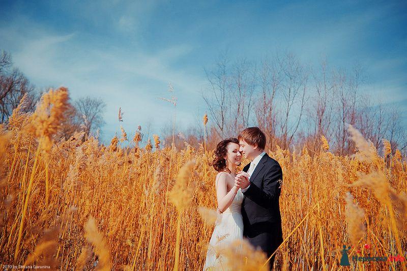 Фото 86718 в коллекции Невесты и женихи!  - Свадебный фотограф. Татьяна Гаранина