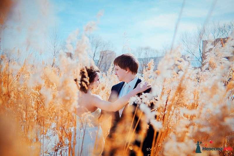 Фото 86719 в коллекции Невесты и женихи!  - Свадебный фотограф. Татьяна Гаранина