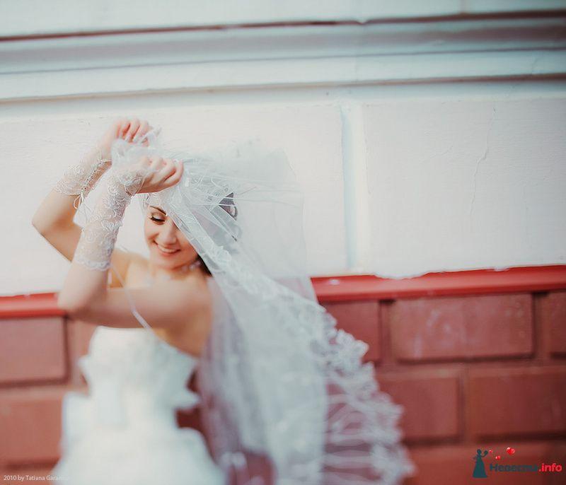 Фото 86726 в коллекции Невесты и женихи!  - Свадебный фотограф. Татьяна Гаранина