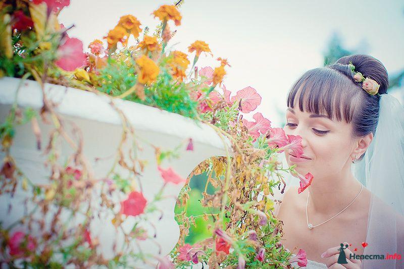 Фото 86771 в коллекции Борис и Тоня - Свадебный фотограф. Татьяна Гаранина