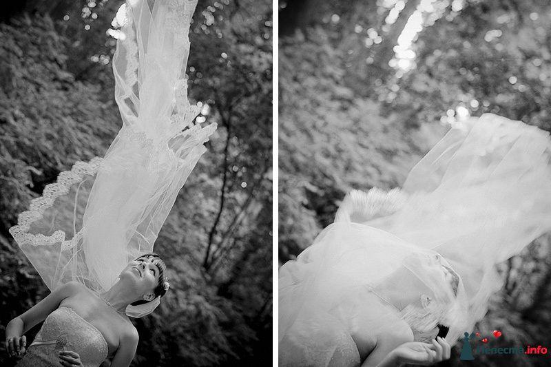 Фото 86792 в коллекции Борис и Тоня - Свадебный фотограф. Татьяна Гаранина