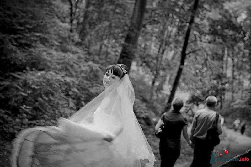 Фото 86793 в коллекции Борис и Тоня - Свадебный фотограф. Татьяна Гаранина