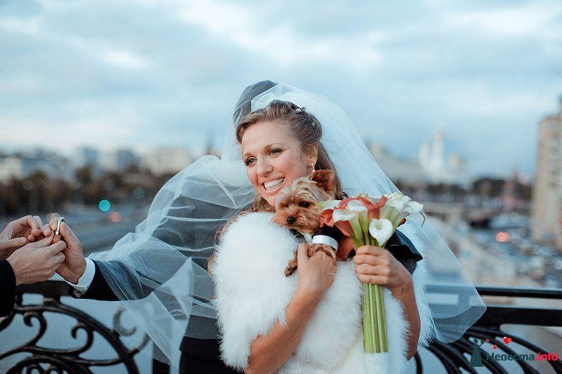 Фото 88966 в коллекции Катя и Серж! Свадебная серия! - Свадебный фотограф. Татьяна Гаранина