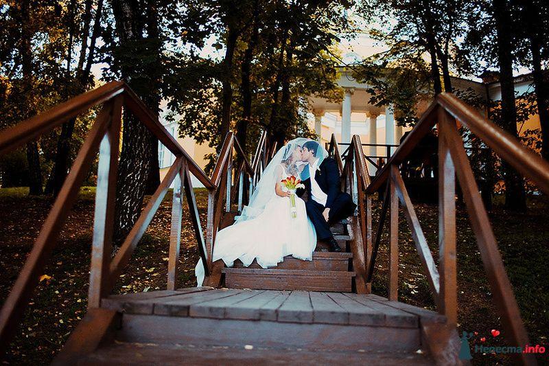 Фото 88980 в коллекции Катя и Серж! Свадебная серия! - Свадебный фотограф. Татьяна Гаранина
