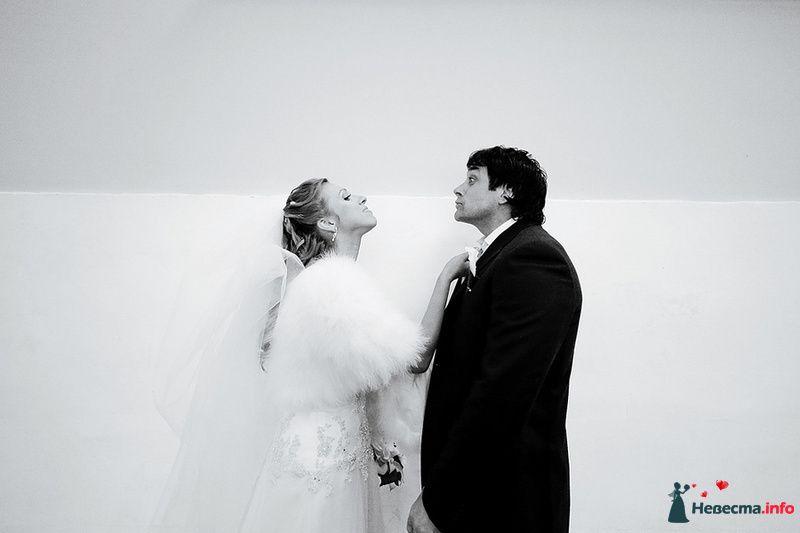 Фото 88983 в коллекции Катя и Серж! Свадебная серия!