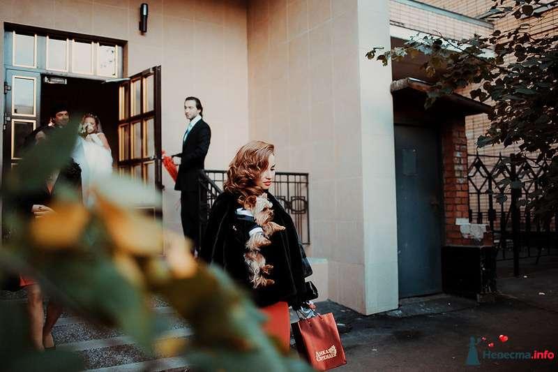Фото 88991 в коллекции Катя и Серж! Свадебная серия! - Свадебный фотограф. Татьяна Гаранина