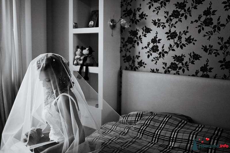 Фото 88995 в коллекции Катя и Серж! Свадебная серия! - Свадебный фотограф. Татьяна Гаранина
